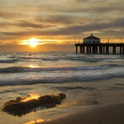Golden Sunlight Over Manhattan Beach Pier