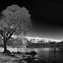 Black And White Photo Contest