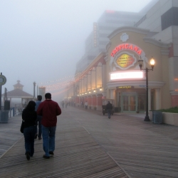 Boardwalk Mist