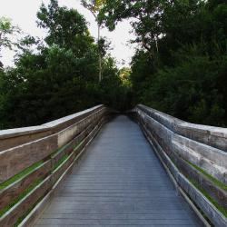Bridges of Onslow County