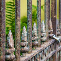 Rusted Gate in New Orleans
