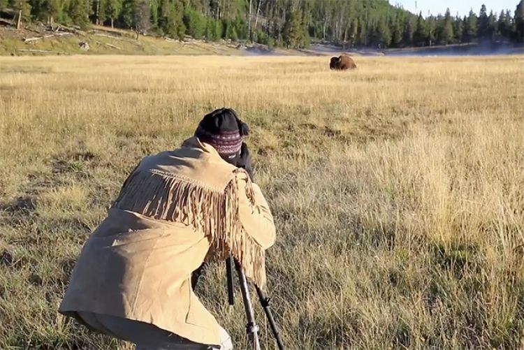 Staying Safe While Photographing Wildlife