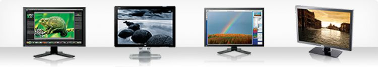 Buyer's Guide 2009: Monitors