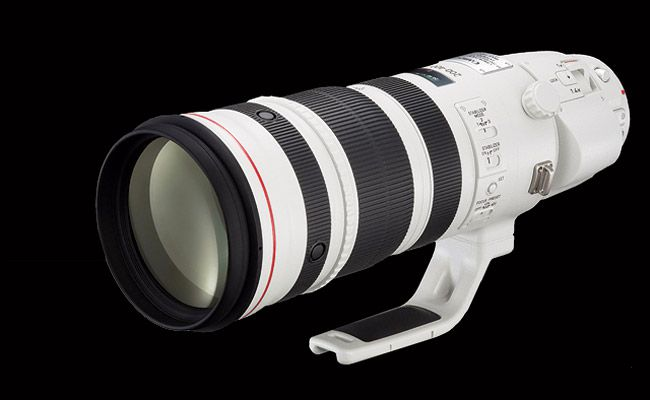 Canon ef 200-400mm f/4L IS USM Extender 1.4x superzoom with built-in teleconverter