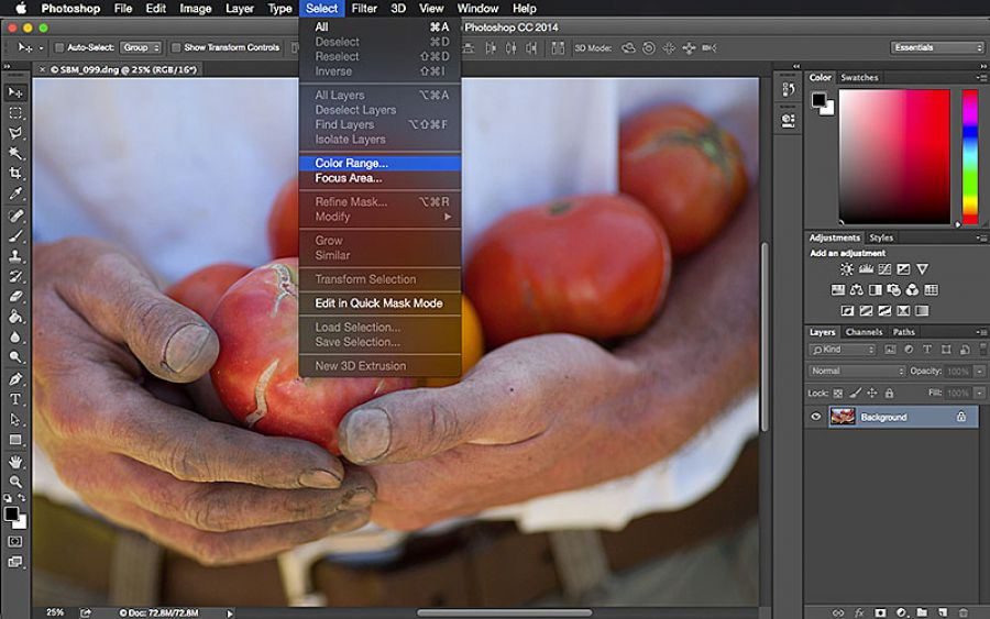 Make Precise Selections With Photoshop's Color Range Tool