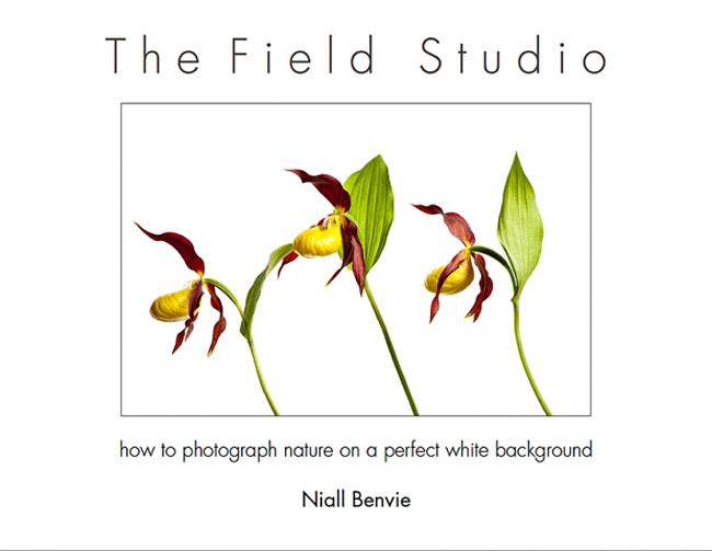 The Field Studio