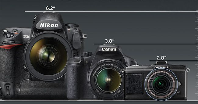 How do SLRs and EVF cameras differ? The first thing you'll notice is size and weight. Compare Nikon's pro model D3S (6.2 inches tall and 2.7 pounds) and Canon's enthusiast-minded EOS Rebel T2i (3.8 inches tall and 1.2 pounds) to the Olympus E-P2 at 2.8 inches tall and 0.6 pounds. Cameras shown here at actual size.