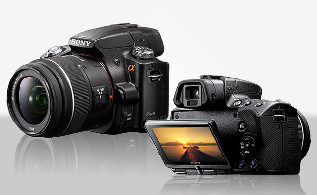 Which Camera Is Right For You?